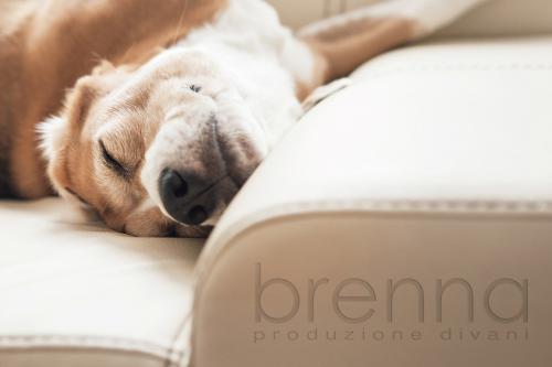 Brenna – Brand Istituzionale